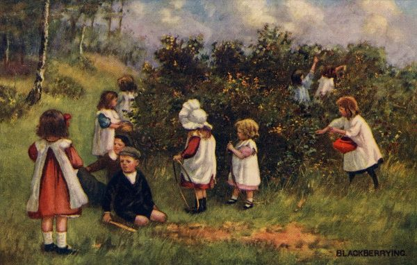 Blackberrying. Artist Anon. Children picking blackberries in the countryside Date: 1911