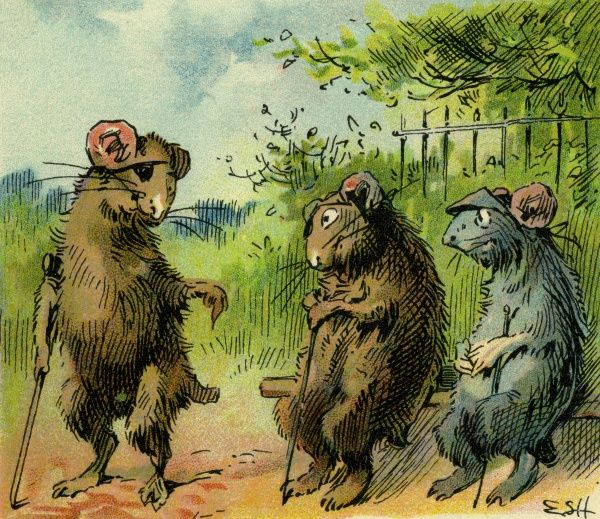 Three Blind Mice. Artist: Evelyn S Hardy. An Aesops' fable Date: circa 1906