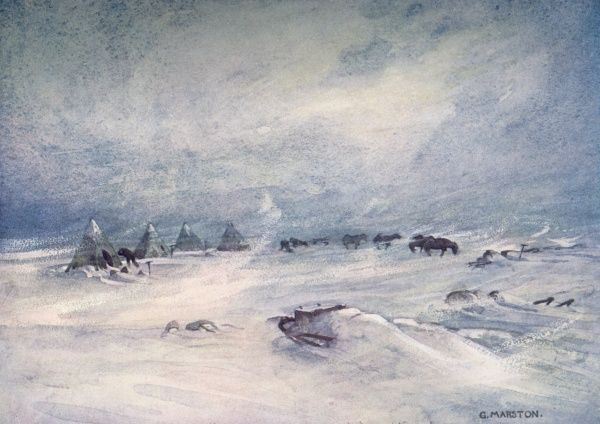 Ponies at the camp during a blizzard on the Barrier. Date: 1907 - 1909