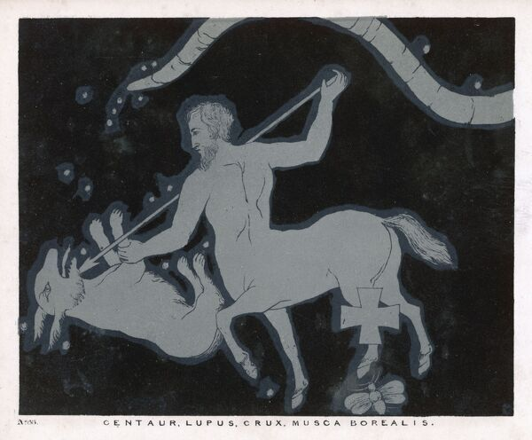 The constellations Centaur, Lupus, Crux, Musca and Borealis