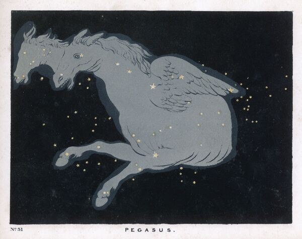Lying near the head of the figure of Andromeda lies the constellation of Pegasus