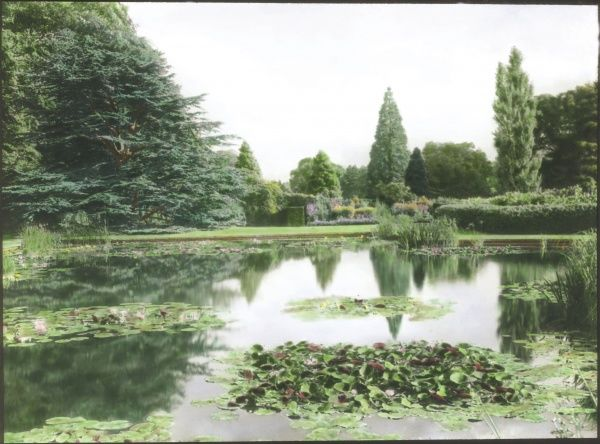 View of Bodnant Garden in Eglwysbach, Conwy, North Wales, with water lilies in flower on a large pond