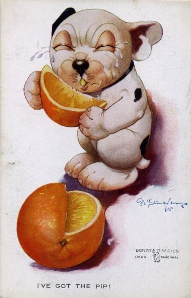 I've got the pip. Bonzo pulling faces while eating a sour orange. Date: ca 1926