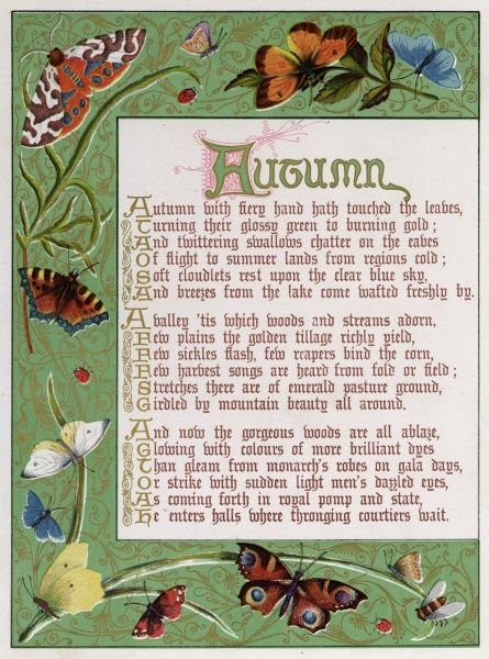 Decorative border illustrating autumn, moths butterflies. Date: 1878