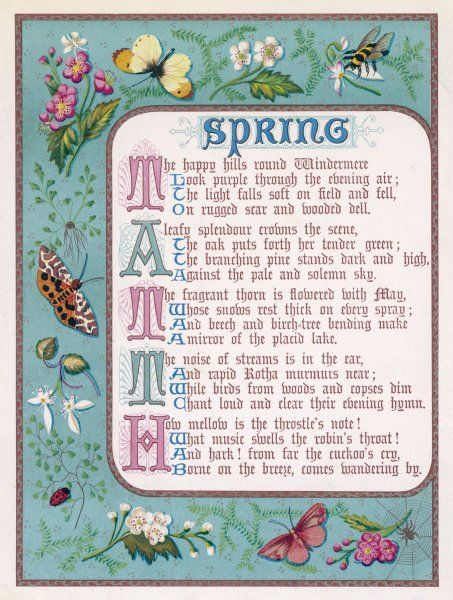 Decorative border illustrating spring, with bees, flowers, butterflies and moths