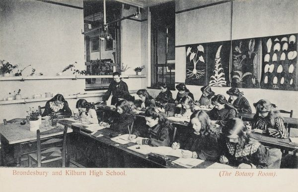 A classroom scene, showing girls at work in the Botany Room at Brondesbury and Kilburn High School in north west London. Botanical pictures decorate the wall at the back