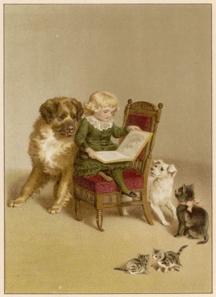 A boy tries to read while his pets try to distract him