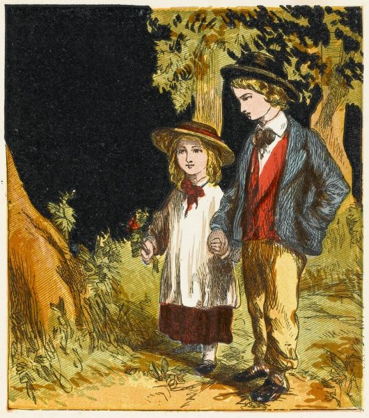Young boy and little sister enjoying a walk in the country together