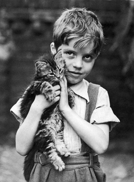 A boy in a striped shirt and trousers with braces holds a fluffy tabby kitten