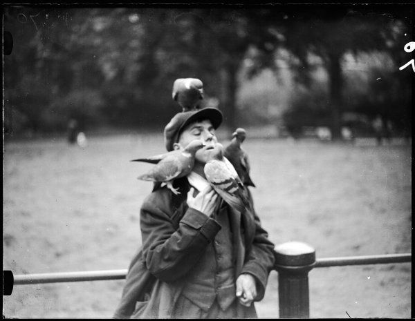 A young man in a cloth cap and waistcoat, photographed with four friendly pigeons sitting on his head and shoulders at Hyde Park, central London