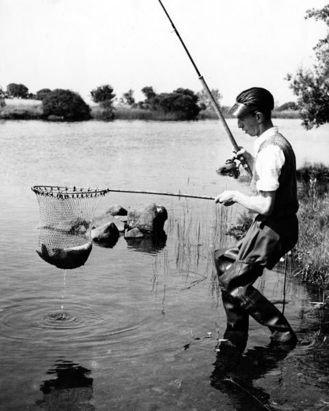 A fisherman wearing a visor and rubber waders, holds up a catch of bream, Lough Forbes, County Longford, Ireland. Date: 1960s