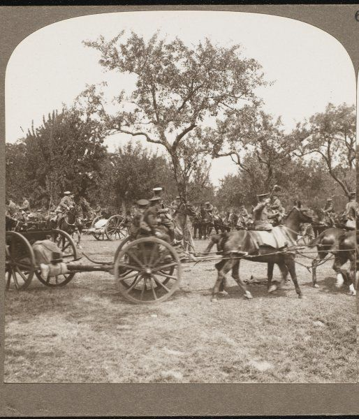 A British horse-drawn artillery regiment hooks up and moves off