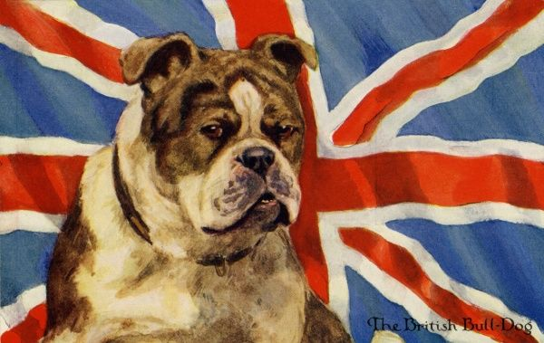 The British Bulldog. Artist: Eileen Hood. A bulldog sits in front of a Union Jack Date: circa 1915