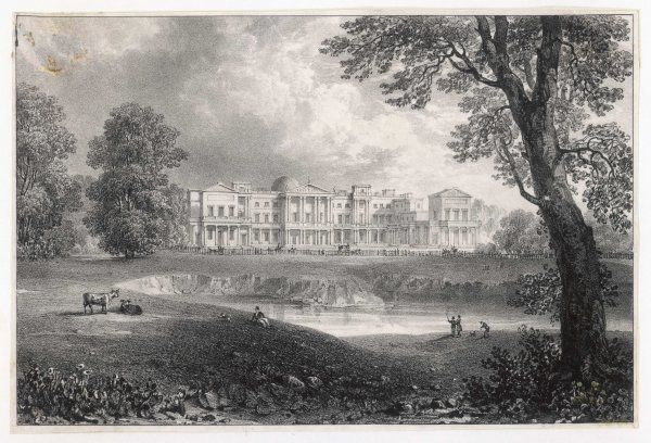 The Palace seen from St James's Park - still in a very natural state, with cows ! - before the erection of the Marble Arch which stood before it from 1827 to 1851