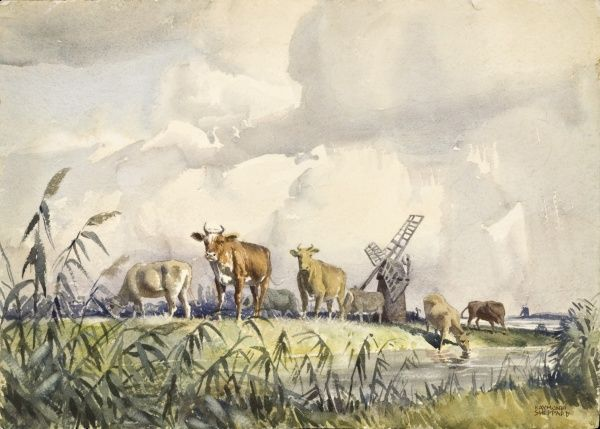 Cattle on the estuary marshes near Waveney, Suffolk. Watercolour painting by Raymond Sheppard