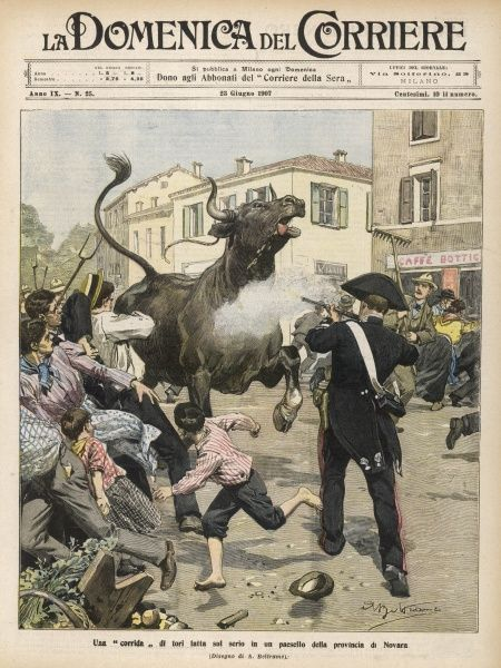 An escaped bull causes havoc in a small town near Novara, Italy