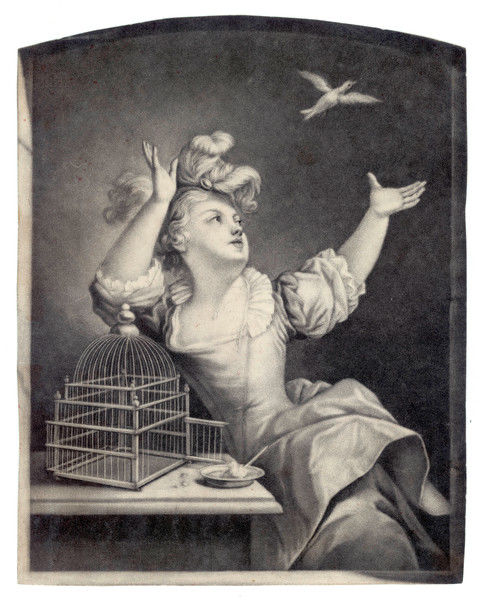 The cage-bird released