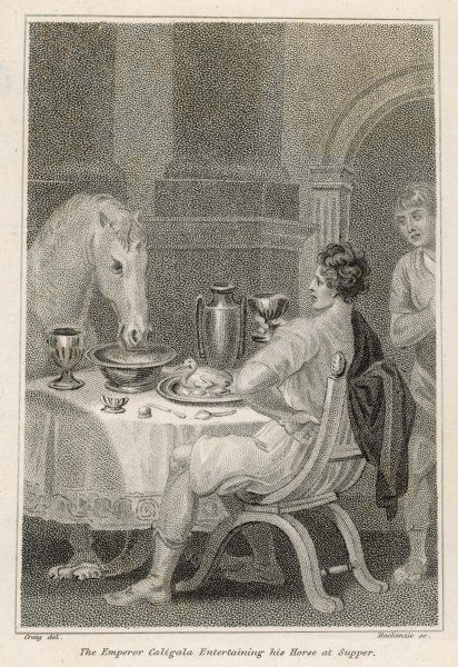 GAIUS CAESAR CALIGULA fed his horse Swift at his table from golden tableware, whom he made priest and would have made consul had the animal lived