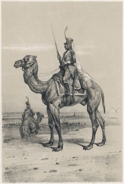A camel (dromedary) and its rider, during the French expedition to Egypt