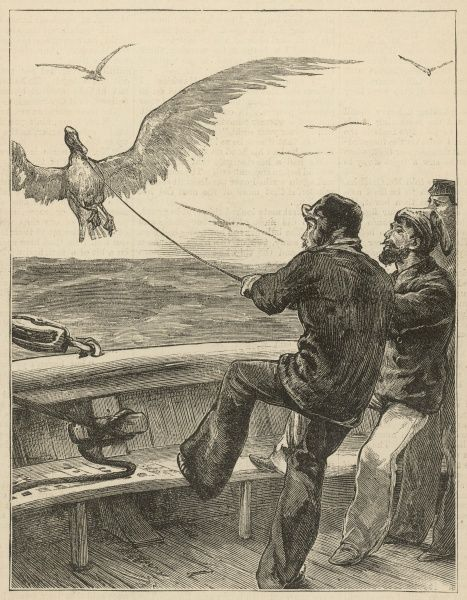 Sailors on the deck of a ship reel in an albatross; the large white bird had been enticed by the bait put on the end of the line