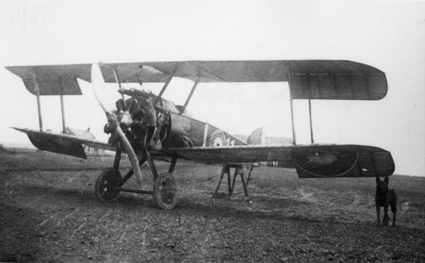 A captured Sopwith Camel biplane of No. 54 Squadron on an enemy airfield during the First World War, with a dog standing alongside. Date: 1916-1918