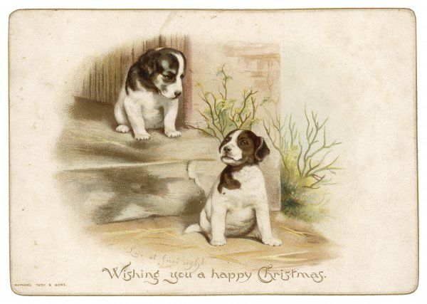 Two dogs wish you a happy Christmas