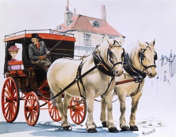 Lady transported by a carriage pulled by two white shire horses. Painting by Malcolm Greensmith