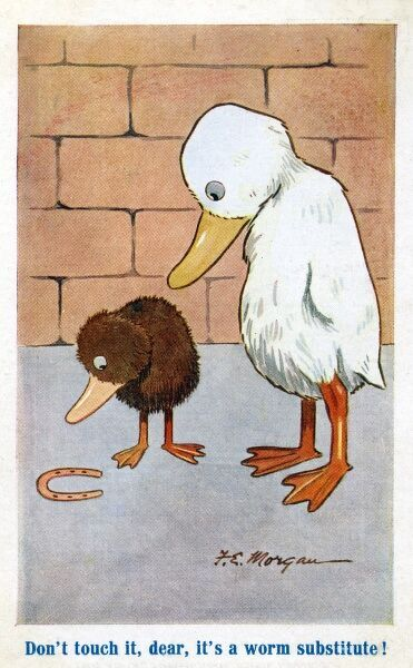 "Mummy duck says to baby duckling (closely examining a horseshoe): ""Don't touch it dear, it's a worm subsititute!"" Date: circa 1915"