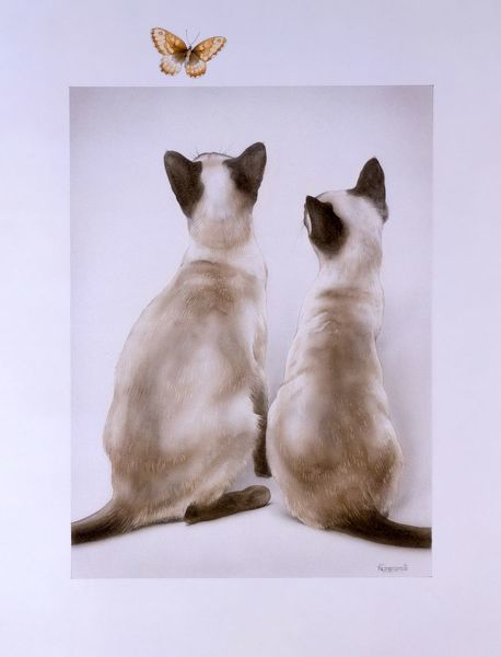 Two siamese cats watch a tortoiseshell butterfly. Painting by Malcolm Greensmith