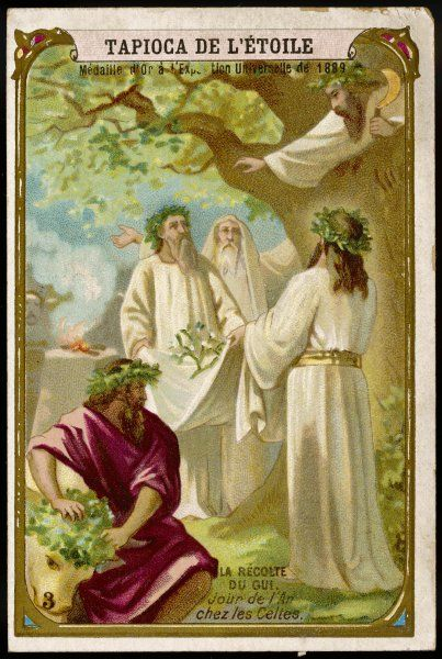 CELTIC NEW YEAR In Celtic cultures in Britain and western Europe, the new year is the occasion for gathering mistletoe, by the Druid priests