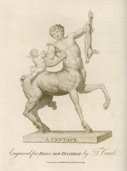 A young Centaur catches a rabbit and shows it proudly to the cupid riding on his back
