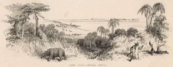 Lake Chad, Central Africa, with elephants, giraffes and other animals