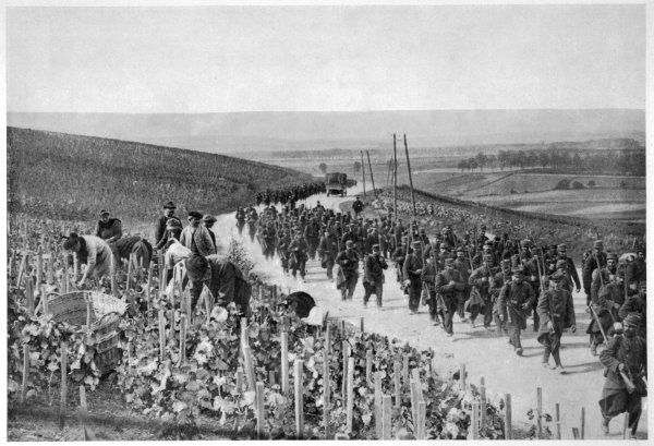 After holding the German advance on the Marne, French troops move forward through the champagne fields - where the vintage is being harvested, war or no war !