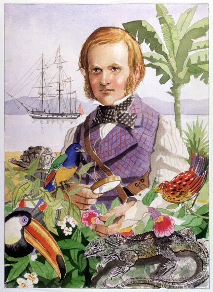 Charles Darwin during his voyage on the HMS Beagle in the 1830s, when he discovered a variety of flora and fauna and begins to have thoughts about the origin of species and evolution