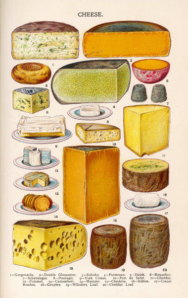 Various cheeses in Household Management book