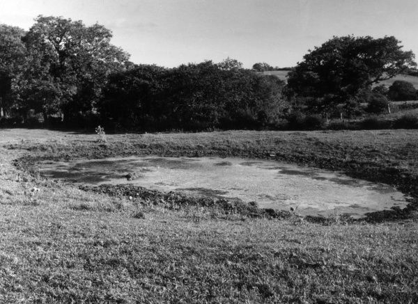 Environmental pollution : An old marlpit, used as a sump for chemical waste. Date: 1960s
