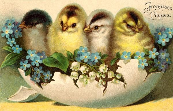Four chicks perch on a flower-decked eggshell