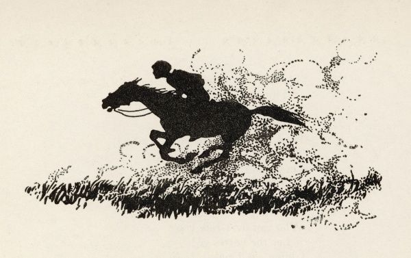A child gallops at speed on his horse