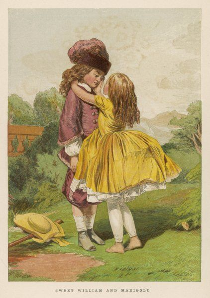 A girl and a boy in the country: Sweet William and Marigold