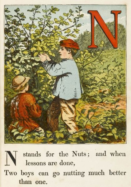 'N' stands for the nuts: and when lessons are done