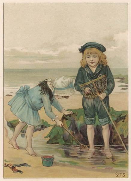 Children playing in a rockpool