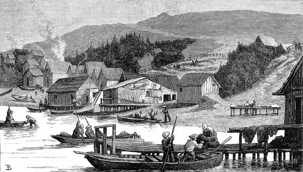 Engraving showing the wooden framed houses and warehouses of a Chinese fishing village on the coast of California, 1884. Shrimp, caught off the American coast, were dried and exported to China as a cash crop