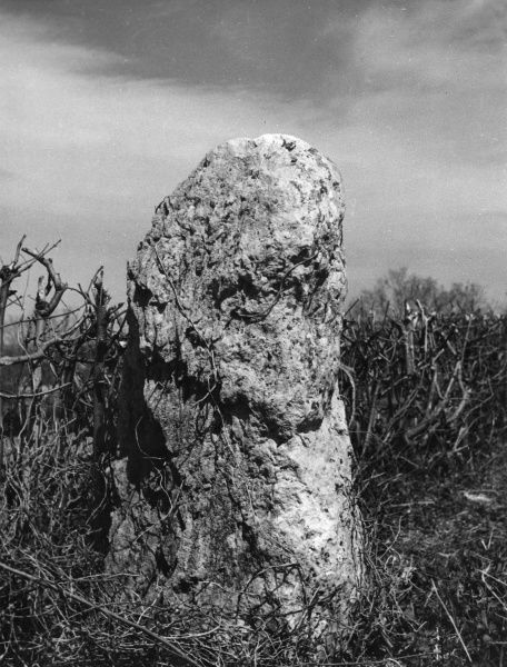 The Churchill Stone, an ancient standing stone in a ditch between Chipping Campden and the village of Churchill, Oxfordshire, England. Date: BC