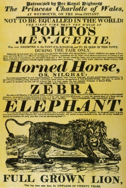 A poster for Polito's Menagerie advertising a horned horse (or nilghau), a zebra, an elephant and a fully grown lion!