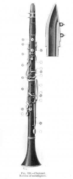 CLARINET - showing open & closed holes and keys, with cross-section of the mouthpiece Date: late 19th century