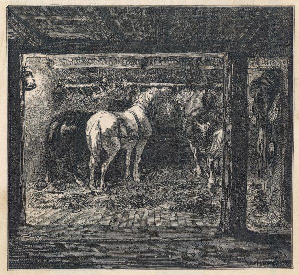 The pony stable in a French colliery