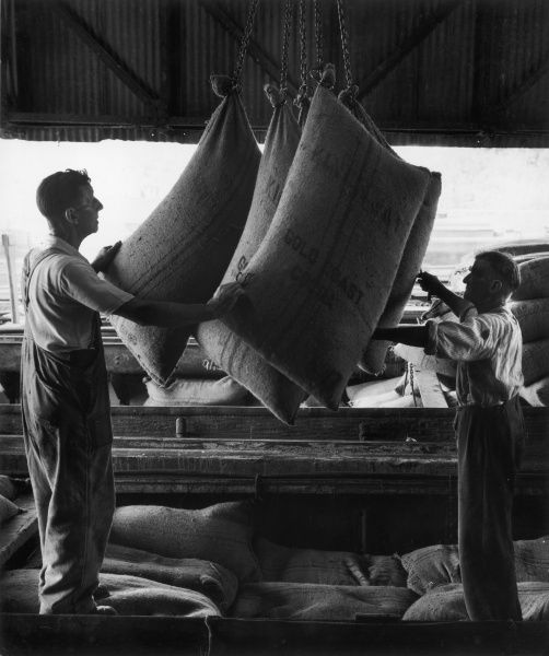 Two workers lift Gold Coast cocoa beans from a low canal barge. Photograph by Heinz Zinram