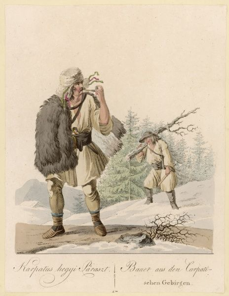 Peasants collecting firewood