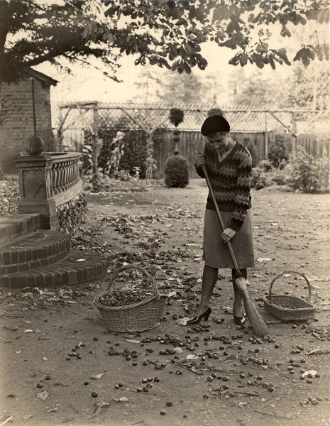 A woman in a skirt, patterned v-neck jumper and beret sweeps up conkers from the ground and collects them in a basket. Date: c.1932