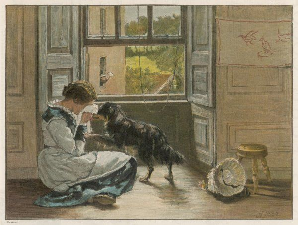 A weeping girl attracts the sympathy of her dog